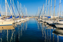 Large yacht harbor in yellow sunset light Royalty Free Stock Photography