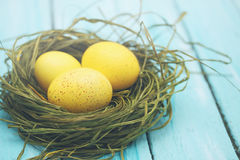 Large yellow eggs Royalty Free Stock Photo