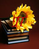 Number pi sun flower growing book diary notebook golden section mathematics physics coil figure count school day march brown. A large yellow sunflower close of Royalty Free Stock Image