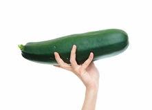 Large Zucchini Stock Photos
