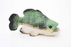 Largemouth Bas Stock Photo