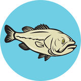 Largemouth Bass Fish Side Circle Cartoon Stock Photo