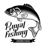 Largemouth Bass illustration Royalty Free Stock Photos