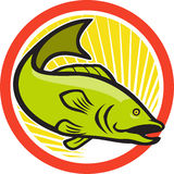Largemouth Bass Jumping Cartoon Circle. Illustration of a largemouth bass fish jumping done in cartoon style on isolated white background set inside circle Royalty Free Stock Images