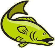 Largemouth Bass Jumping Cartoon. Illustration of a largemouth bass fish jumping done in cartoon style on isolated white background Stock Photography