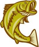Largemouth Bass Jumping Cartoon Stock Photo