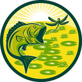 Largemouth bass jumping with dragonfly Royalty Free Stock Image