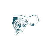 Largemouth bass and lure vector design Royalty Free Stock Photography
