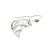 Largemouth bass and lure vector design Stock Photos