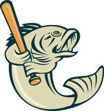 Largemouth bass player baseball Stock Image