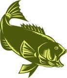 Largemouth Bass  woodcut Royalty Free Stock Image