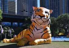 Larger than life lanterns in the shape of Tiger. Chinese zodiac animals at Circular Quay stock photo