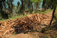 LargeTimber Pile. A large pile of handcut timber and firewood stock photography