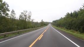 Largo camino con la área arbolada