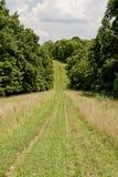 Largo camino en la colina Foto de archivo