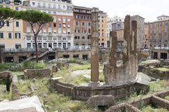 Largo di Torre Argentina Images stock