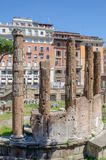 Largo di Torre Argentina, is an archaeological site close to where Julius Caesar was assassinated, and is home to a colony of cat royalty free stock images