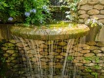 Laribal Gardens royalty free stock images