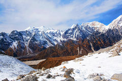 Larke passerande, Nepal Arkivfoton