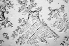 Larmes vues au microscope photographie stock