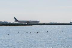 Larnaca, Cyprus, Europe - Jan. 29, 2018, plane in the Larnaca International Airport and salt lake with some flamingos. Plane in the Larnaca International Airport Royalty Free Stock Image
