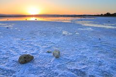 Larnaca salt lake Stock Photography