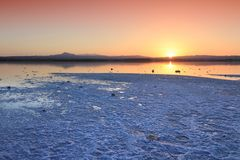Larnaca Salt Lake Royalty Free Stock Photography
