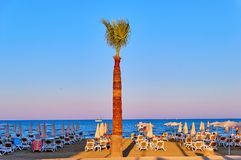 Larnaka, Cyprus - 8 August 2018: Palm trees in Cyprus Larnaca on. Larnaka, Cyprus - 8 August 2018: Long palm trees in Cyprus Larnaca on the blue tropical sky royalty free stock images