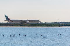 Larnaka, Zypern, Europa - Jan. 29, 2018, Flugzeug im internationalen Flughafen Larnakas und Salzsee mit einigen Flamingos stockbild