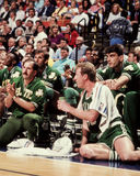Larry Bird Boston Celtics Royaltyfri Bild