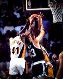 Larry Bird Boston Celtics Fotografering för Bildbyråer