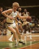 Larry Bird. Boston Celtics forward Larry Bird, #33. (Image taken from color slide Royalty Free Stock Image