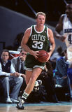 Larry Bird Boston Celtics Legend Royalty Free Stock Images