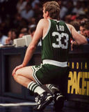 Larry Bird, Celtics de Boston photographie stock