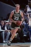 Larry Bird Boston Celtics stock photography