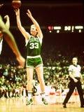 Larry Birdboston Celtics-Anzeige Lizenzfreie Stockfotografie