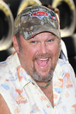 Larry the Cable Guy Royalty Free Stock Images