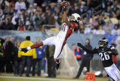 Larry Fitzgerald Stock Images