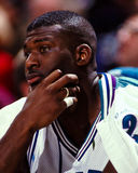 Larry Johnson, Charlotte Hornets Royalty Free Stock Photo