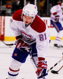 Lars Eller Montreal Canadiens Royalty Free Stock Image