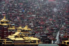 The Larung Gar  Wuming Buddhist Institute Royalty Free Stock Image