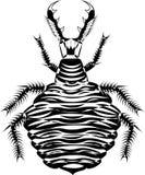 Larva di Mirmeleon illustrazione vettoriale