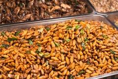 Larvas fritadas no mercado da noite de Tailândia Imagens de Stock Royalty Free