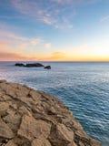 Larven vaggar nära den Dyrholaey bågen i Island Royaltyfri Bild