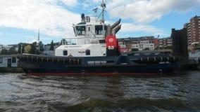 Larwa w Hamburg Zdjęcia Royalty Free