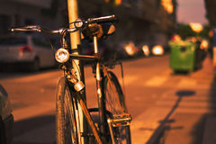 Lasów bicicletas syna Para verano Obrazy Stock