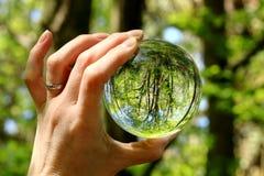 Lasów drzewa widzieć w miniaturze przez szklanej kuli ziemskiej Obrazy Stock