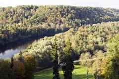 lasów gauja rzeka Obrazy Royalty Free