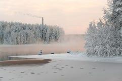 lasów jezioro zima Fotografia Royalty Free
