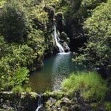 lasów tropikalnych wodospadu Zdjęcie Stock
